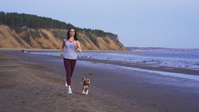 Slow motion: young slim brunette woman in sports uniform runs with his dog along the sandy shore on a summer morning. stock footage