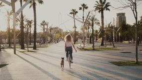 Pretty girl on her urban vintage bicycle at sunset. Slow motion young woman in blue jeans on cruiser bike commutes on way to work or school in sunset boulevard stock footage