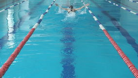 Slow motion of young woman in goggles and cap swimming butterfly stroke style in the blue water indoor race pool.  stock video
