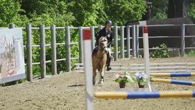 SLOW MOTION: A young woman jockey on a small horse pony performs at equestrian competitions.