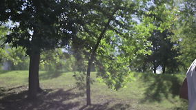 Slow motions. The sports man is running in a tree`s shadow. stock video