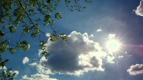 Slow moving clouds on bright blue sky with sun. Tree branches in the corner of the frame. Static Shot. Static shot - Slow clouds moving across bright blue sky stock video footage