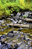 Slow Moving Stream. A slow moving stream with leaves turning in the background Royalty Free Stock Photography
