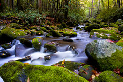 Slow moving stream in fall. A slow moving stream in the Smoky Mountains in fall Stock Photos