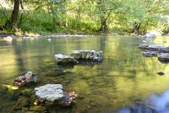 The slow moving stream in a forest. A slow moving stream in a forest Royalty Free Stock Images