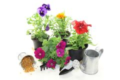 Slow-release Fertilizer. With flowers and garden tools on a light background Royalty Free Stock Images