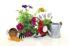 Slow-release Fertilizer with garden tools Stock Photo