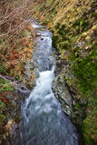 Slow river Stock Photo