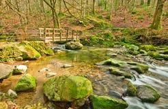 Slow river streem Royalty Free Stock Image