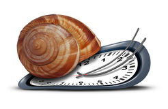 Slow Service. Concept as a time clock with a shell shaped as a snail  as a metaphor for procrastination and leisurely customer service or being tired and sleepy Stock Images