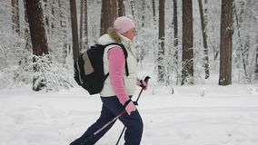 Slow shot at a woman who goes through the snowy forest. Around her grow tall and massive trees. Woman warmly dressed in. Slow shot at a woman who goes through stock video