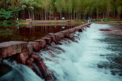 Slow Shutter Blend Of Small Creek In Wild Forest, in China.  Stock Photo