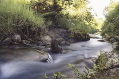 Slow shutter photo of a river surrounded with green plants