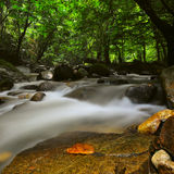 Slow Shutter Of Spring River. The freshness spring river in forest Stock Photo