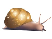 Slow snail. Artistic image of a snail Stock Image
