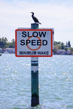 Slow speed sign in Tampa Bay. Slow speed sign with bird on it. Taken in the tampa bay, Florida Royalty Free Stock Photos