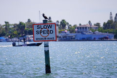 Slow speed sign in Tampa Bay Royalty Free Stock Photography