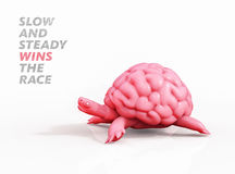 Slow and steady wins the race. Turtle brain 3D illustration. Slow brain-turtle runs on  background. 3D illustration Royalty Free Stock Photo