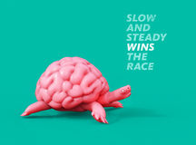 Slow and steady wins the race. Turtle brain 3D illustration. Slow brain-turtle runs on  background. 3D illustration Stock Images