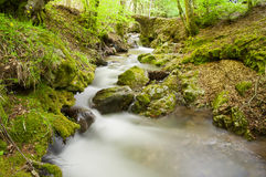 A slow stream silky. An old bridge over a stream that flows between the mountains of the Aspromonte National Park (Reggio Calabria Stock Photography