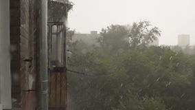 SLOW: Strong rain in the summer. SLOW MOTION: Strong rain in the summer stock video footage