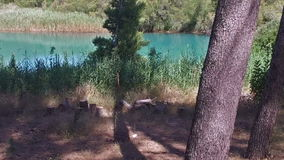 Slow Walking the forest by the river in Caminito del Rey 03 stock video footage
