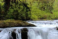 Slow Water Falling Off Rocks In A Green Forest. Peaceful white water falling off rocks in a forest river stock photography