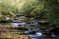 Slow Waters Of A Mountainous Stream In Fall. Stock Image