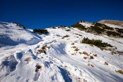 Slowaaks de bergenlandschap van Belianske Tatry stock afbeeldingen
