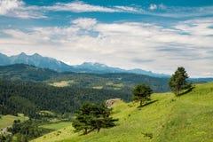 Slowaaks landschap Stock Foto's