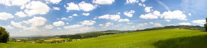 Slowaaks plattelandslandschap met vruchtbare gebieden en groene sterke drank Stock Foto's