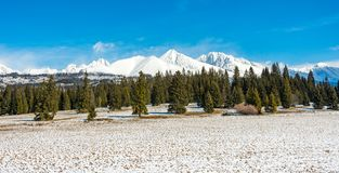 Slowakei: Panoramaansicht von großem Tatra Große Berge im bacground und Wald in Vordergrund Snowy-kühlem Wetter lizenzfreie stockbilder