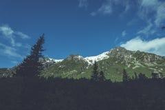 Slowakische Karpatenberge im Herbst grüne Hügel mit Oberteilen Lizenzfreie Stockbilder