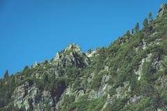 Slowakische Karpatenberge im Herbst grüne Hügel mit Oberteilen Stockfotos