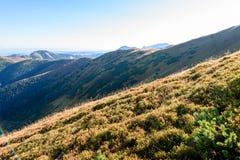 Slowakische Karpatenberge im Herbst sonnige Bergkuppen in der Summe Stockfotografie