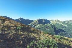Slowakische Karpatenberge im Herbst sonnige Bergkuppen in der Summe Lizenzfreies Stockfoto