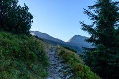 Slowakische Karpatenberge im Herbst Wanderweg auf Lizenzfreie Stockfotos