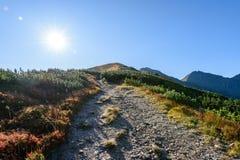 Slowakische Karpatenberge im Herbst Wanderweg auf Stockfotos