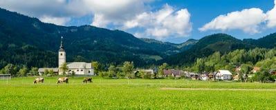 Slowenien, typische Landschaft in Gorenjska stockfotografie