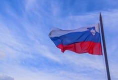 Slowenisch nationaler offizieller Hintergrund des blauen Himmels der bauchigen Weinflasche Lizenzfreie Stockbilder