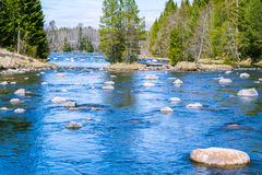 Slowly flowing river with plenty of rocks Stock Photo