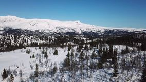 Slowly flying over trees and large mountain winter landscape stock video footage