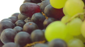 Slowly spinning Grapes stock video