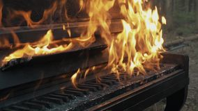 Slowmotion close up high flames burning piano and tree in forest stock footage