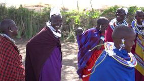 Slowmotion of Happy Maasai African Tribe Females In Traditional Jumping Dance