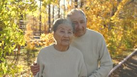 Slowmotion schot van bejaarden koppelt het koesteren van in een park in mooi een de herfstmilieu stock footage