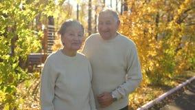 Slowmotion schot van bejaarden koppelt het koesteren van en het glimlachen van aan elkaar in een park in mooi een de herfstmilieu stock videobeelden