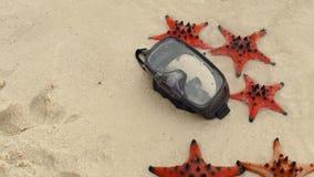 Slowmotion schot van Rood zeester en het duiken masker op het strand stock videobeelden