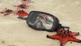 Slowmotion schot van Rood zeester en het duiken masker op het strand stock footage