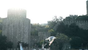 Slowmotion of seagull flying near famoust Istanbul fortress on Bosphorus. Sea stock video footage